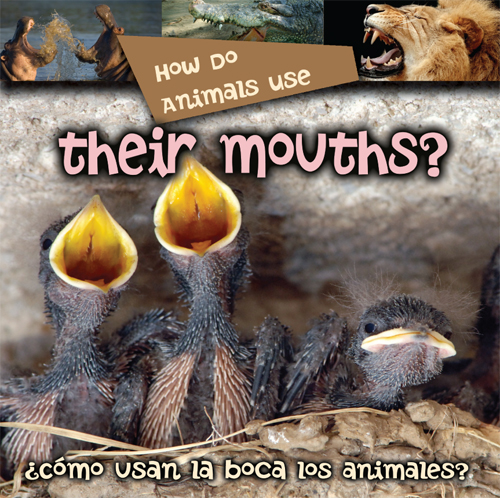 How Do Animals Use Their Mouth