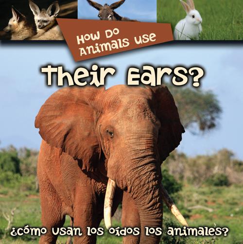 How Do Animals Use Their Ears?