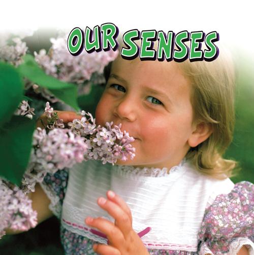 Our Senses Small Book