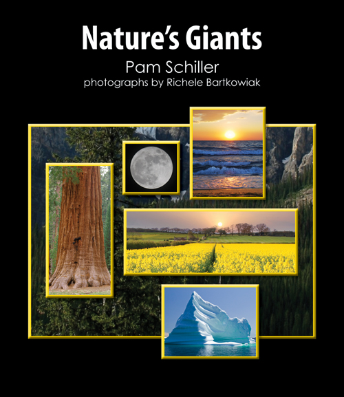 Nature'S Giants Small Book